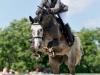 konie_40